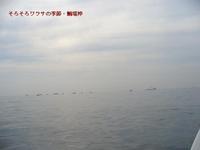 20061020_05_01_1