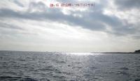 081219_kamagasaki